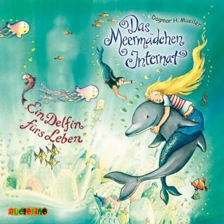 Dagmar H. Mueller: Das Meermädchen Internat (3): Ein Delfin fürs Leben