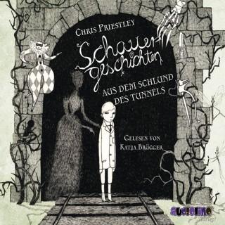 Chris Priestley: Schauergeschichten aus dem Schlund des Tunnels (3)