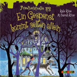 M. Sarah Klise: Friedhofstraße 43 (3): Ein Gespenst kommt selten allein