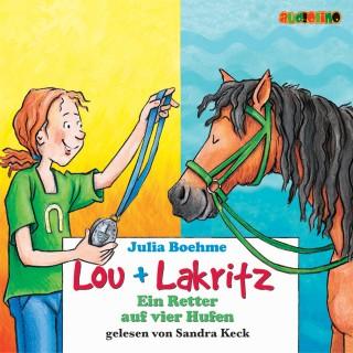 Julia Boehme: Lou + Lakritz (4): Ein Retter auf vier Hufen
