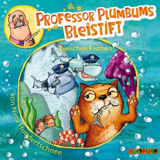 Nina Hundertschnee: Professor Plumbums Bleistift (2)