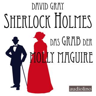 David Gray: Sherlock Holmes