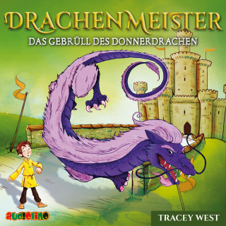 Tracey West: Drachenmeister (8)