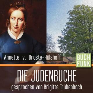 Annette von Droste-Hülshoff: Die Judenbuche