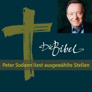 Luther: Peter Sodann liest ausgewählte Bibeltexte
