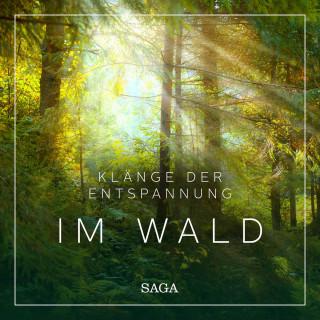 Rasmus Broe: Saga Sounds - Klänge der Entspannung: Im Wald