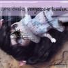 Luna Darko: Vergessene Kinder (Ungekürzt)